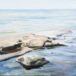 Vivid Shoreline 9
