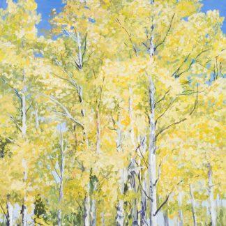 Fall Poplars