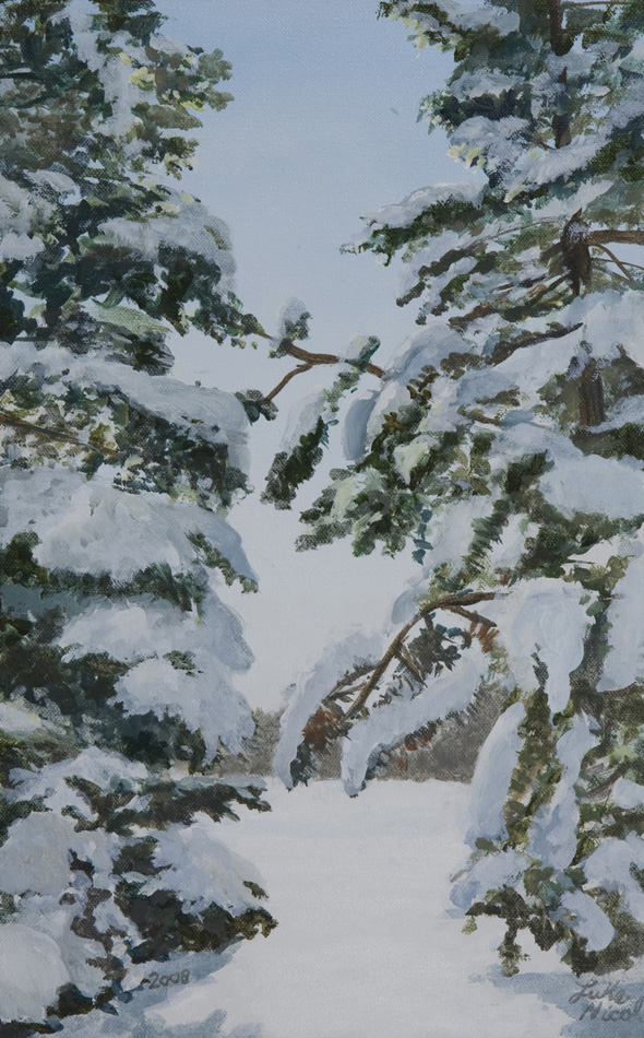 Winter Forest 1
