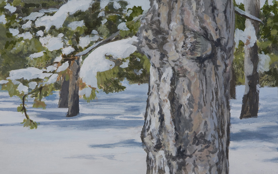 Winter Forest 2
