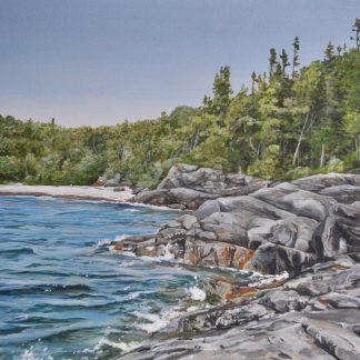 Water Rocks Forest