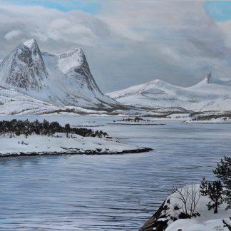 Narvik Fjord