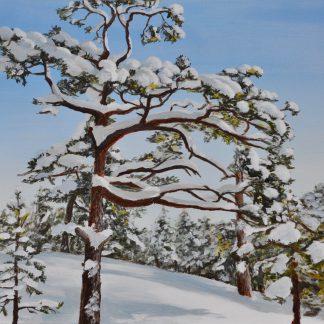 Lumenpeitto 1. Snow Cover.