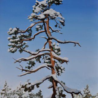 Lumenpeitto 2. Snow Cover.