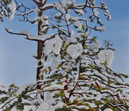 Lumenpeitto 3. Snow Cover.
