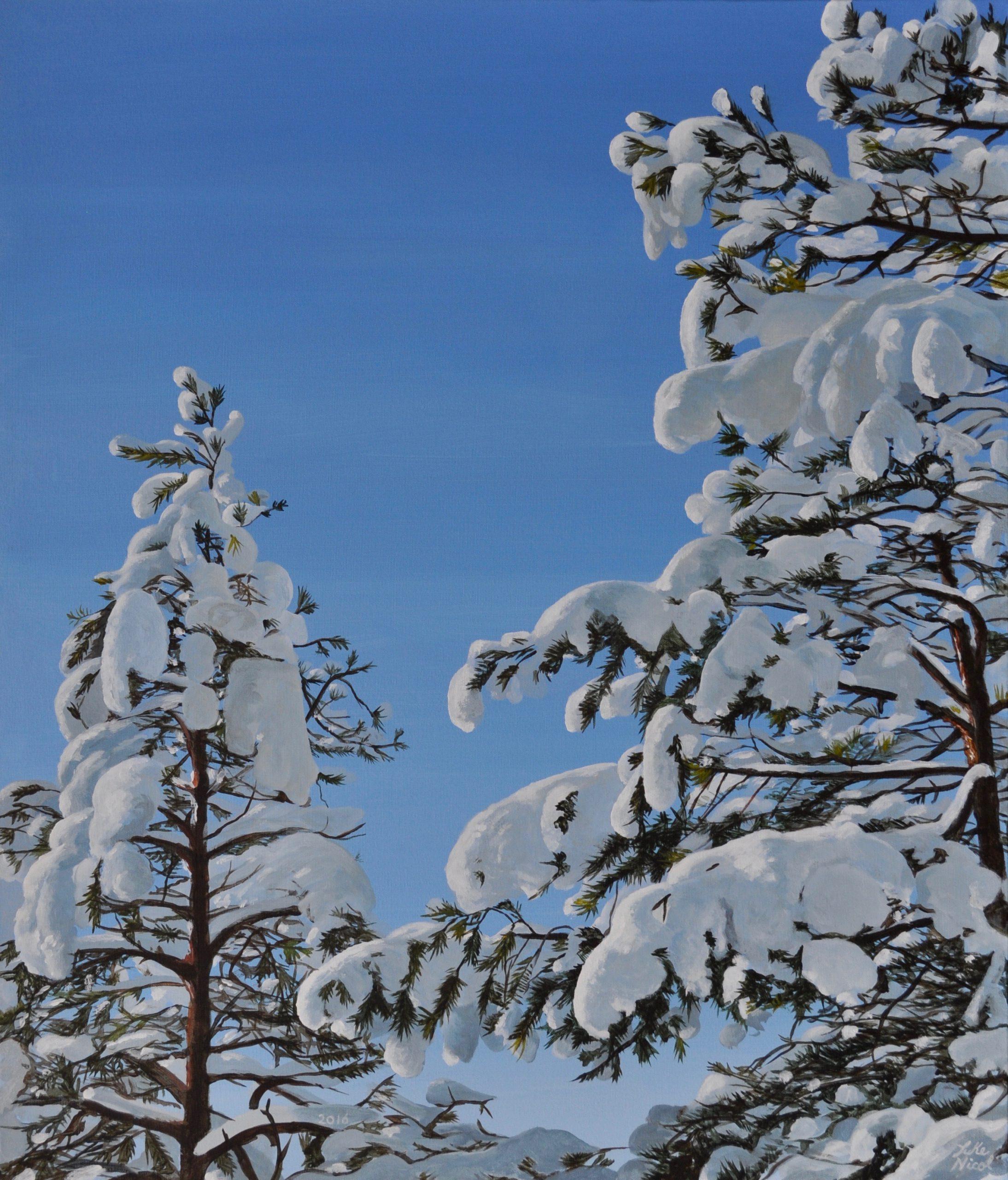 Lumenpeitto 4. Snow Cover.